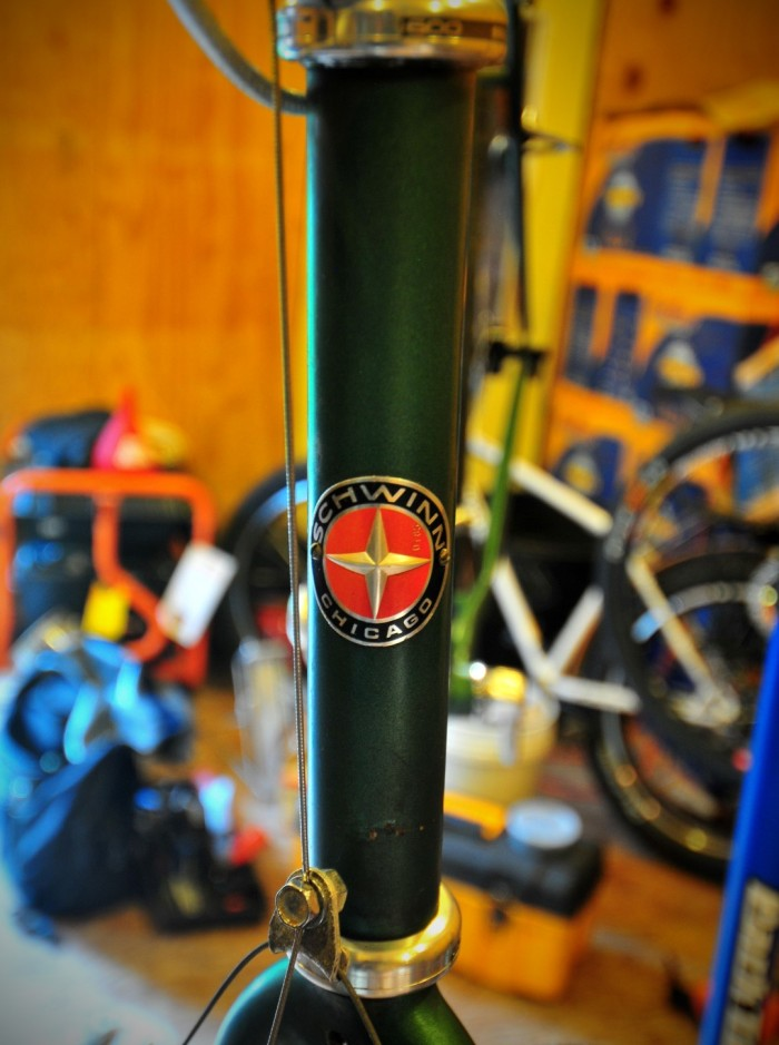 Headtube Badge